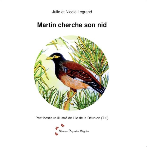 Martin cherche son nid