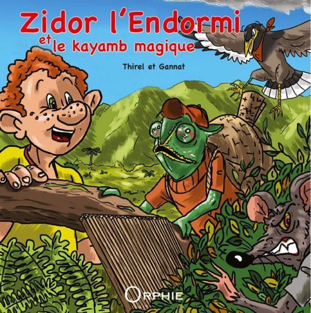 Zidor l'endormi et la kayamb magique