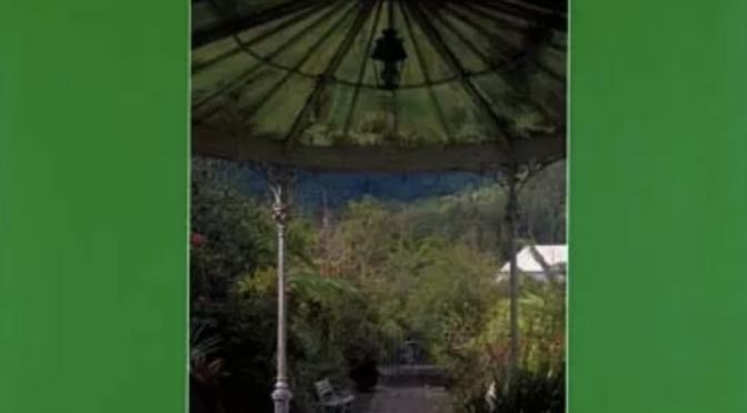 Les jardins créoles – Île de La Réunion
