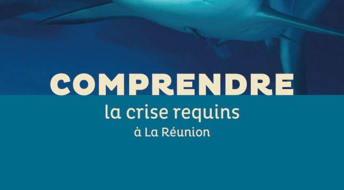 Comprendre la crise requins à La Réunion