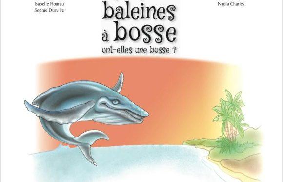 Mais pourquoi donc les baleines à bosse ont-elles une bosse ?