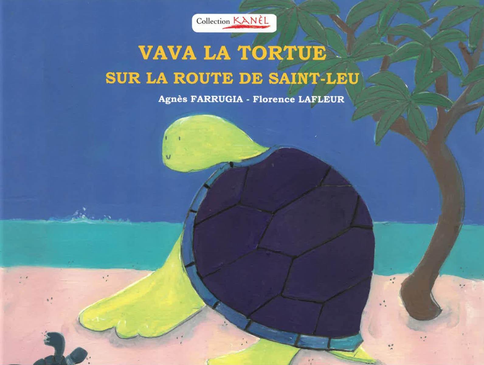 Vava la tortue sur la route de Saint-Leu
