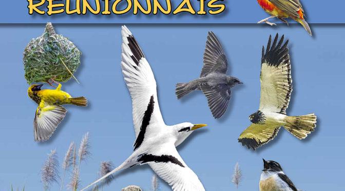 L'essentiel des oiseaux de La Réunion