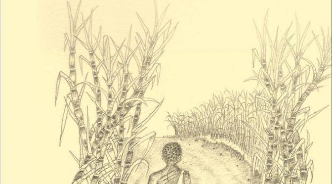 Des esclaves sous le fouet – Le procès Morette à l'île Bourbon