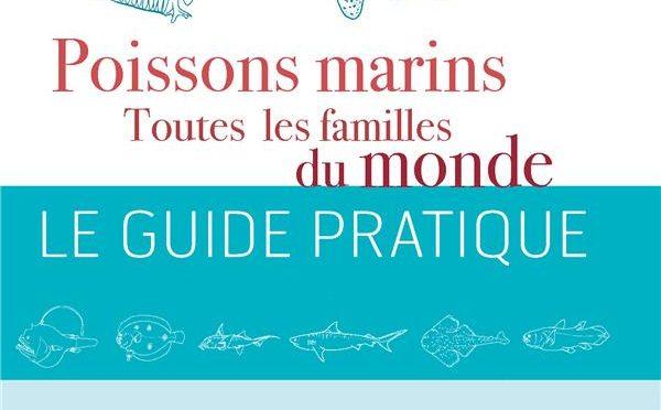 Poissons marins – Toutes les familles du monde
